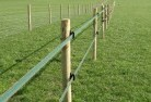 Allynbrook Electric fencing 4